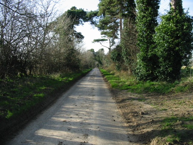 Lane near Updown Farm