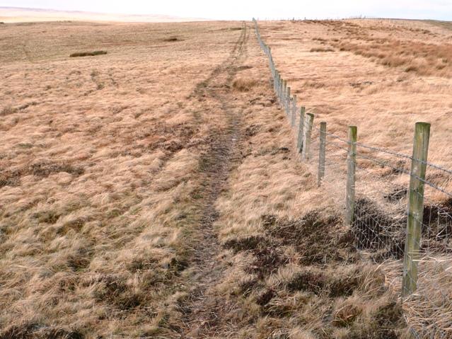 North-west off Cefn Coch