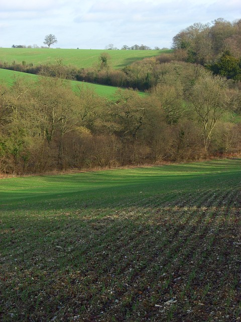 Arable fields amongst woodland near Ashampstead