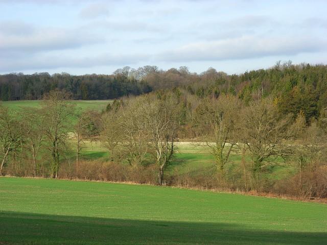 Farmland and woodland, Ashampstead