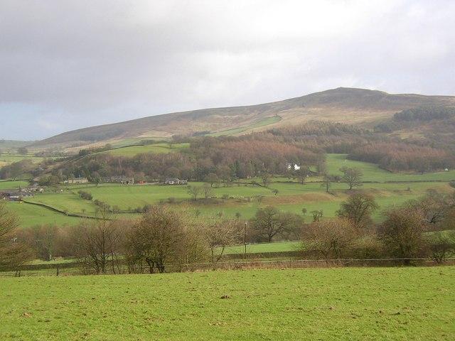 Bank on the hillside, Beamsley