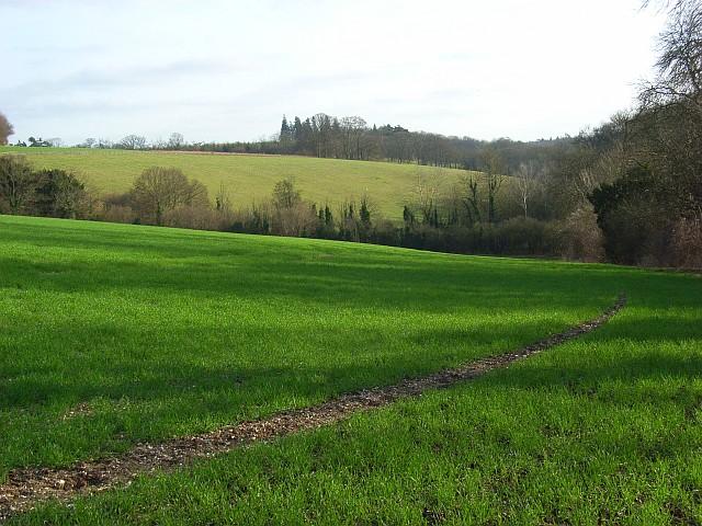 Farmland, Basildon