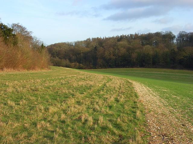 Farmland and woods, Ashampstead