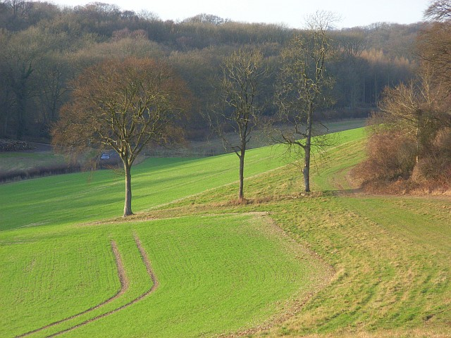 Farmland and woods, Ashampstead