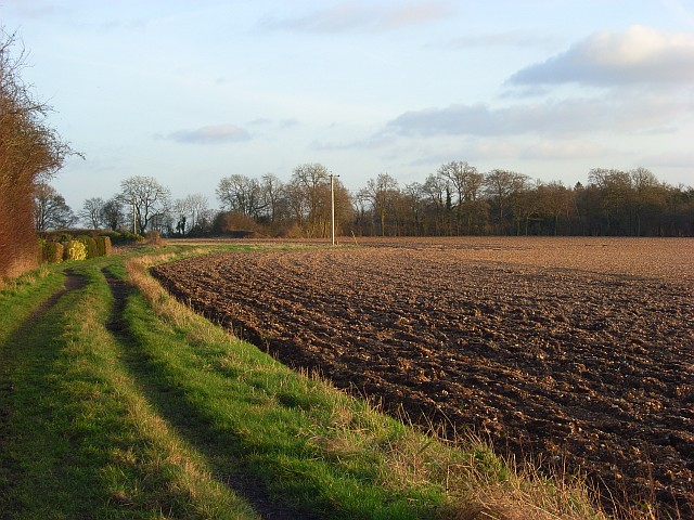 Farmland and track, Ashampstead