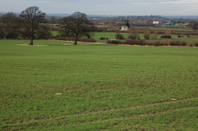 Farmland near Lower Clopton Farm