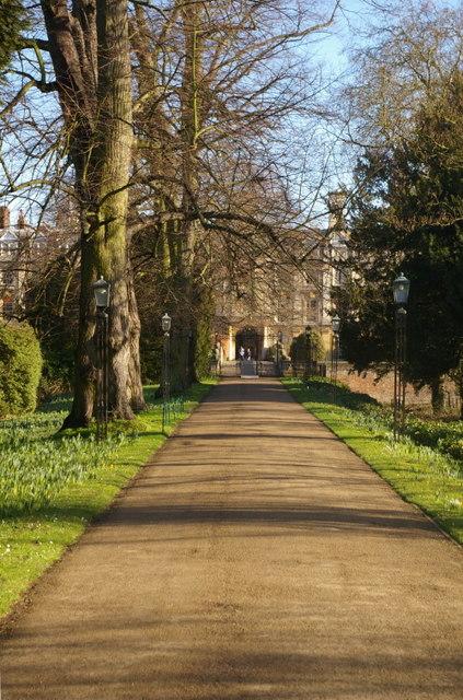 The Avenue, Clare College
