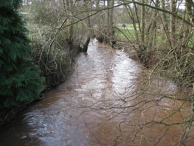 Garren Brook at Llangarron