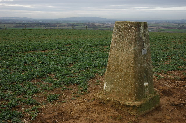 Trig point on Meon Hill