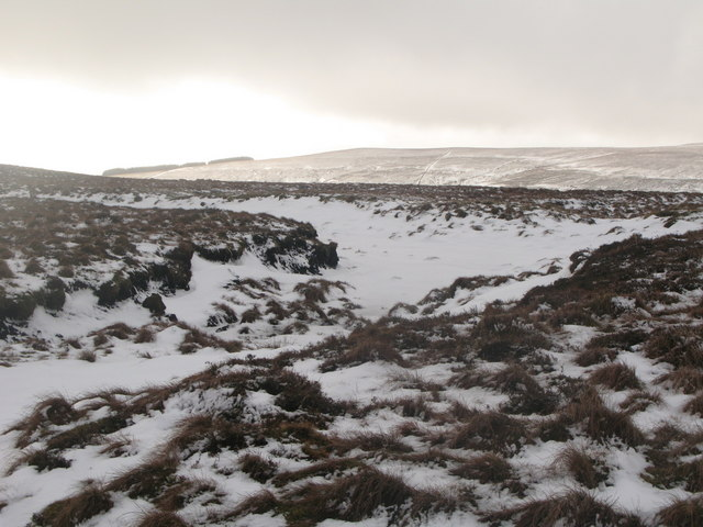 The headwaters of the burn in Whimsey Cleugh