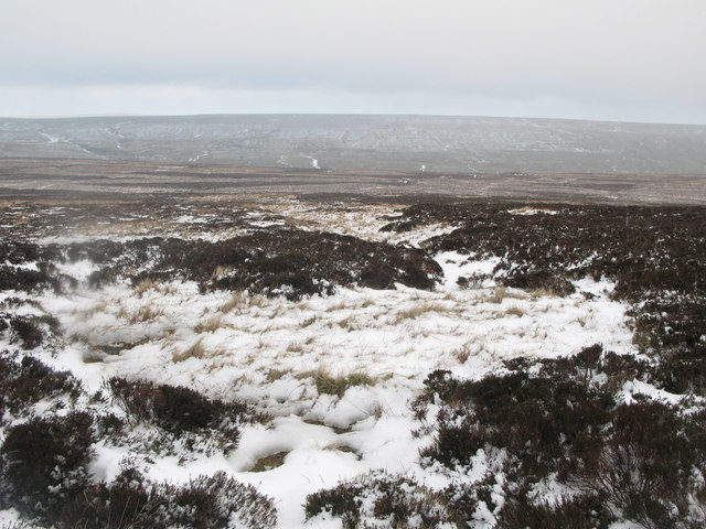 Wolfcleugh Common