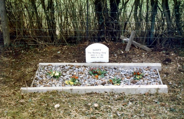 Dog's Grave