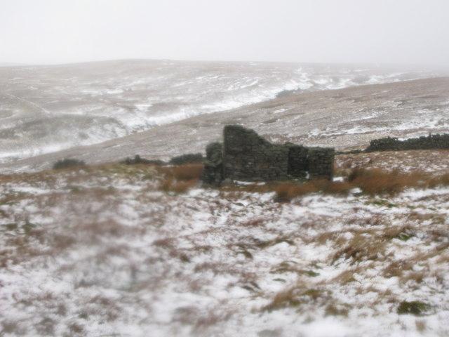 Ruin on Sedling Fell