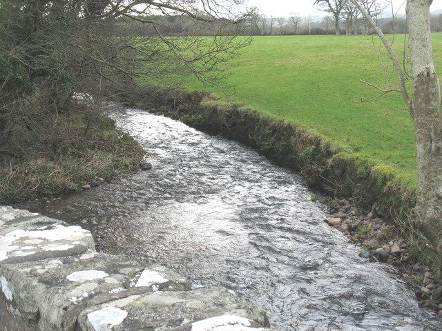 Afon Rhyd-hir below Pont-y-Gribin
