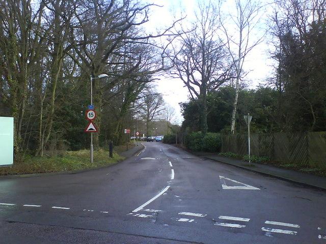 Ambrose Lane
