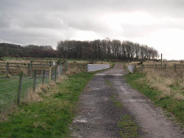 Farm track and bridge