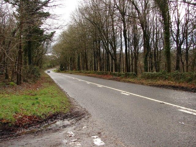 Whillan East Wood - B727