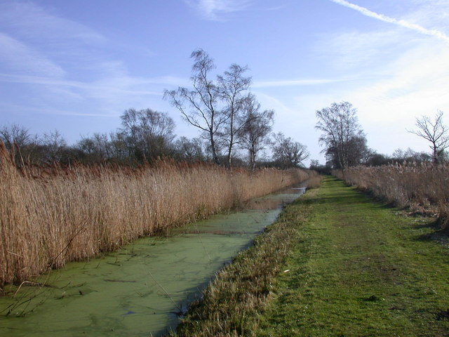 Ditch and Drove, Woodwalton Fen NNR