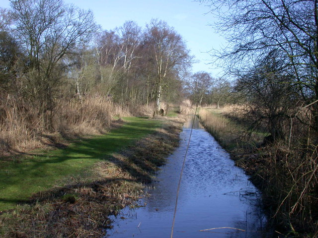 Drove and Ditch, Woodwalton Fen NNR
