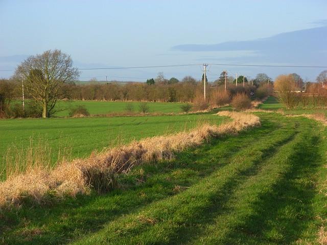 Farmland, East Hagbourne