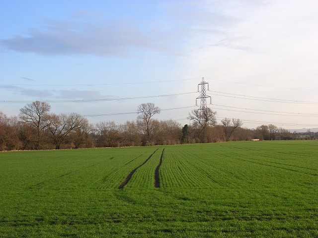 Farmland, East Hagbourne