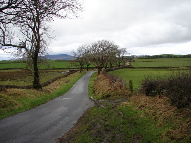 Tannymass - Old Military Road