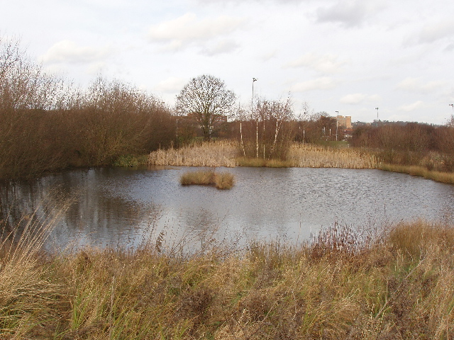 Pond by Horsenden Hill