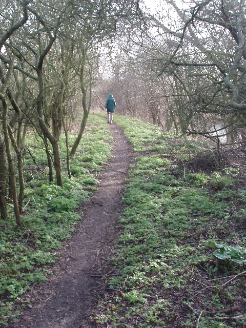 Path by canal, edge of Horsenden Hill