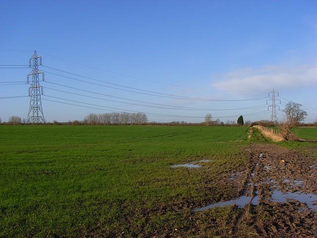 Farmland with pylons, Aston Upthorpe