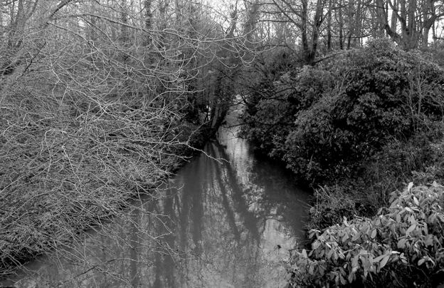 The River Dearne entering the Grounds of Bretton Hall