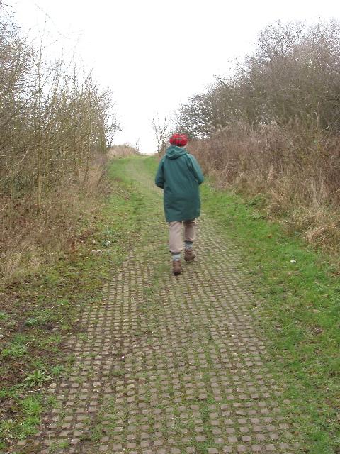 Path up Horsenden Hill