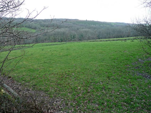 View over Greylake valley