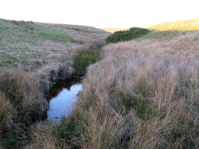 The cleugh of Toddle Burn (2)