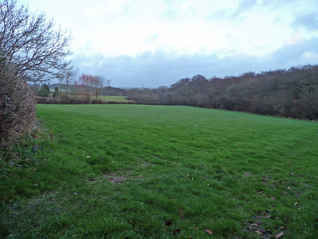 Grazing land near Budacombe