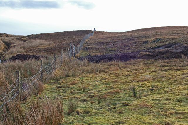 Fence above Loch Caroy