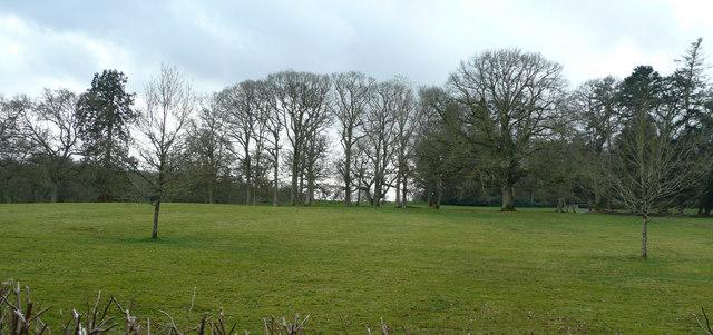 Pasture near Broomford Manor