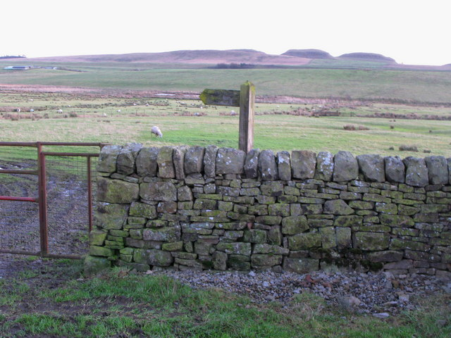 Public footpath leading east from Moss Peteral