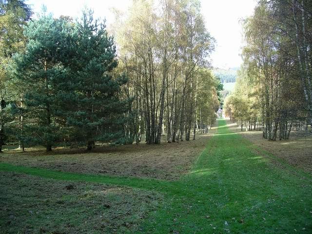 Dawyck Botanic Garden