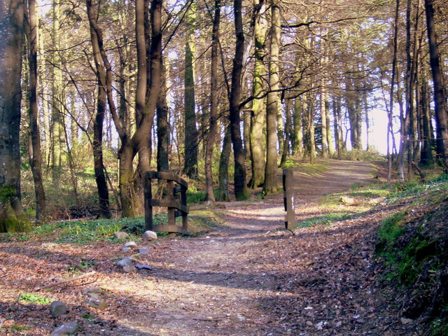 The Cottage Wood at  Keith