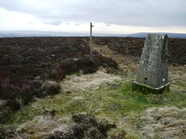 On Mynydd Varteg Fawr