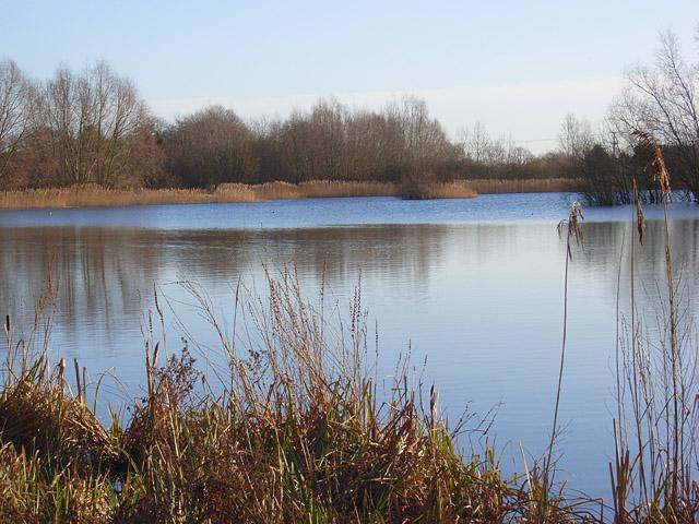 A lake, Burghfield