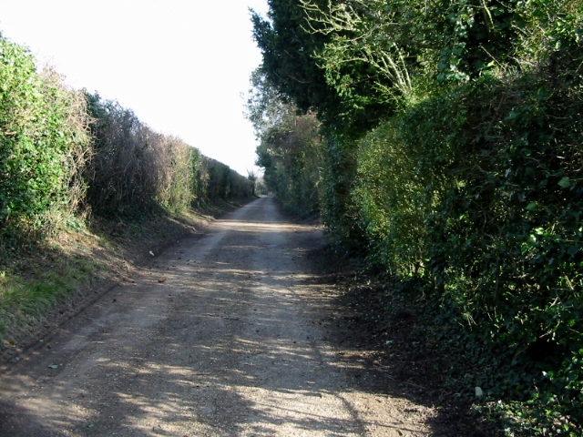 View NE along road from Coldharbour