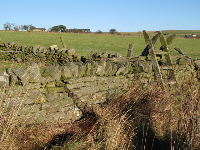 Ladder stile on the footpath to Low Sunnyside