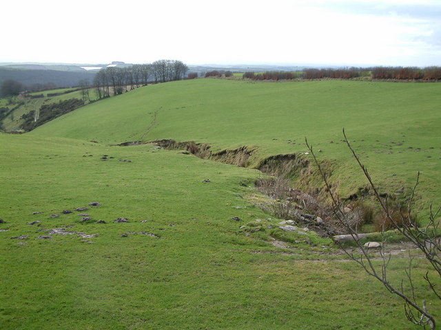 Source of stream at Long Holcombe Cross