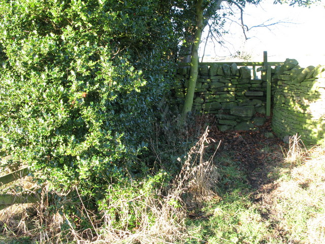 Stone stile in wall on footpath west of Catton