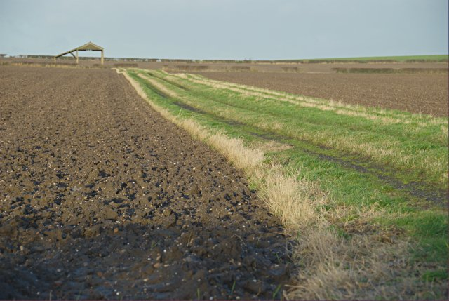 Field track west of Aston-on-Trent