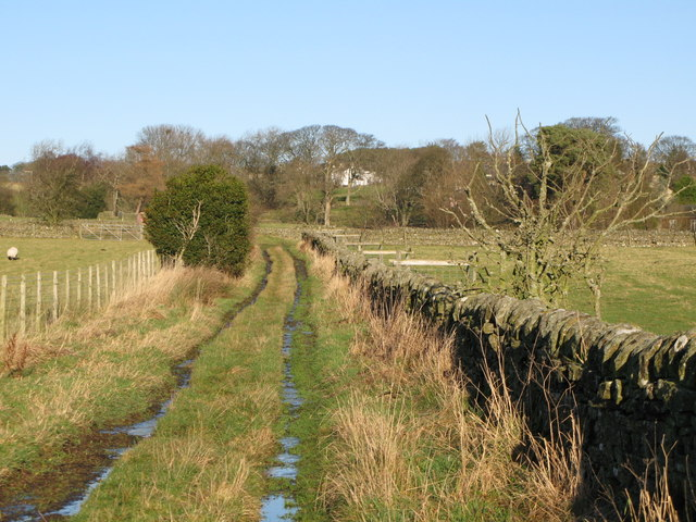 Track near Catton