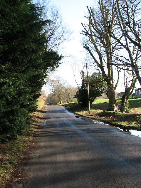 Looking east along Lady Lane