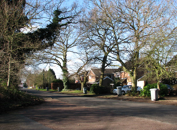 Newton Road through Newton St Faith