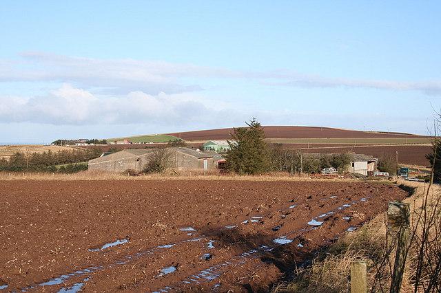 Easter Cushnie Farm
